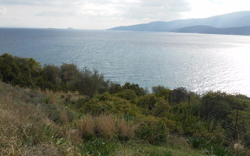 Οικόπεδο 1.400τμ Μύλος Λουτρων Ωραιας Ελένης 380.000 ευρώ