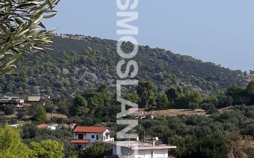 Οικόπεδο  1000 τ.μ στην Άνω Αλμυρή 55.000 ευρώ