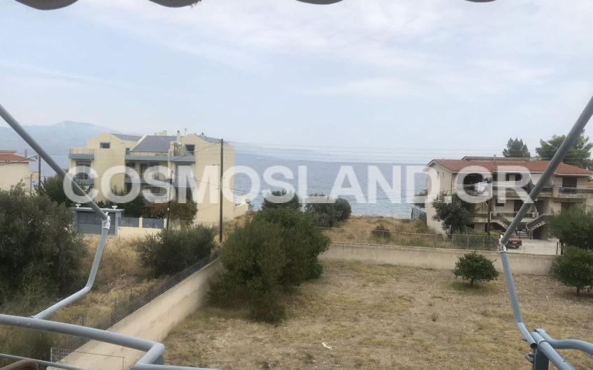 Διαμέρισμα 51 τ.μ στην Αλμυρή 65.000 ευρώ