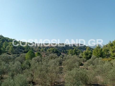 Μονοκατοικία 180 τ.μ στο Κατακάλι 175.000 ευρώ