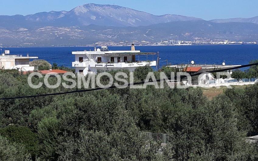 Μονοκατοικία 150 τ.μ στην Αλμυρή 75.000 ευρώ ΚΩΔ.7089