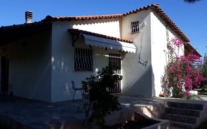 Μονοκατοικία 58 τ.μ στα Λουτρά Ωραίας Ελένης 61.000 ευρώ