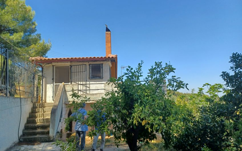 Μονοκατοικία 70 τ.μ στην Αγία Παρασκευή 40.000 ευρώ ΚΩΔ.7093