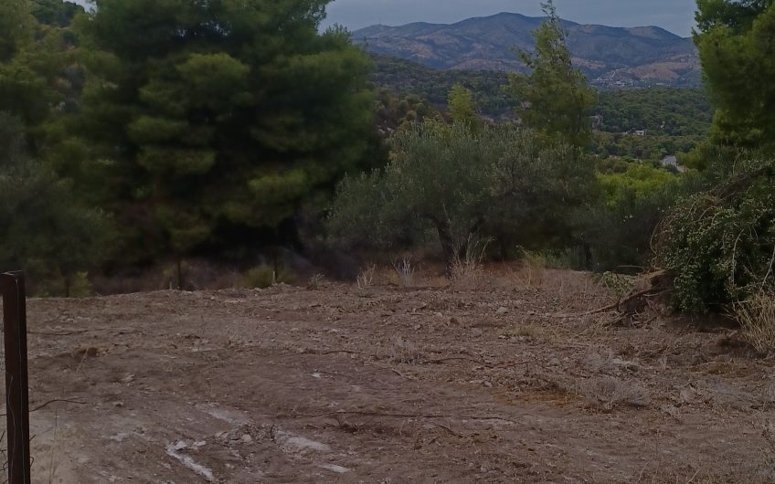 Οικόπεδο 335 τ.μ στην Ανω Αλμυρή 18.000 ευρώ ΚΩΔ.5070